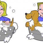 Devenir Toiletteur pour Chiens - Fiche métier et Salaire