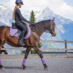 Comment choisir une selle d'équitation ?